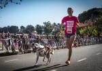 Eukanuba Dog Run 2